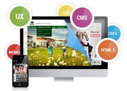 Professional Web Application Development Services Especially For Custom Websites